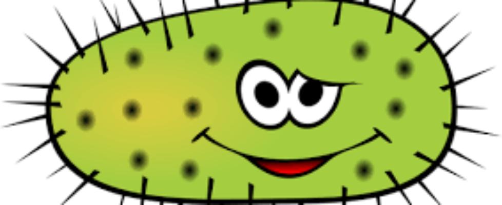 funny bacteria